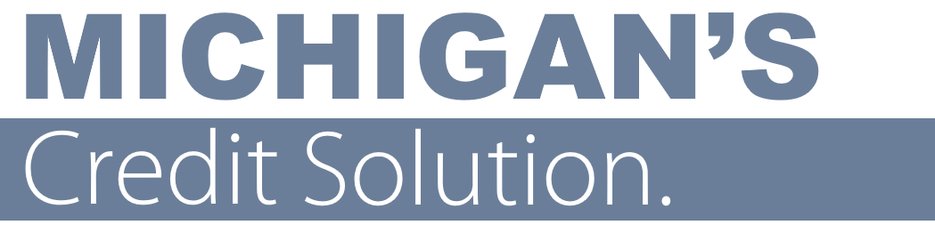 MICHIGANS CREDIT SOLUTION.PNG